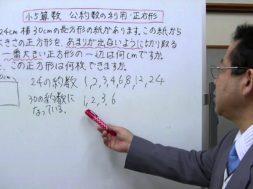 【小5算数】公約数の利用・正方形を切り取る