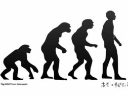 【歴史01-01】人類の誕生