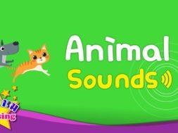 Animal Sounds <Kids Vocabulary>