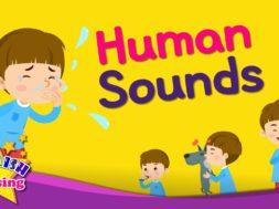Human Sounds <Kids vocabulary>