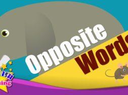 Opposite Words <Kids vocabulary>