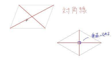 【小学校4年算数 10-8】対角線と四角形