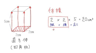 【小学校6年算数 8-4】角柱の体積