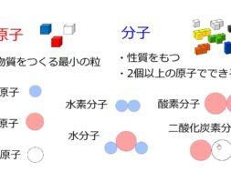 【中学2年・理科 11-2】分子