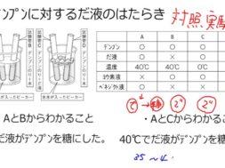 【中学2年・理科 3-2】だ液の実験、セロハンの実験
