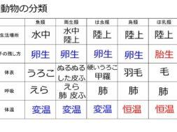 【中学2年・理科 5-2】セキツイ動物の分類