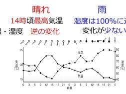 【中学2年・理科 6-6】1日の気温・湿度の変化