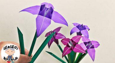 【折り紙】菖蒲(あやめ)の立体的な折り方