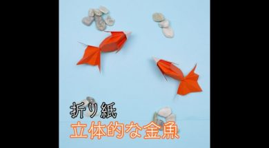 折り紙で立体的な金魚を作ってみましょう!