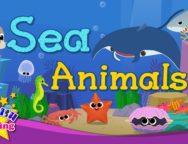 Kids vocabulary – Sea Animals
