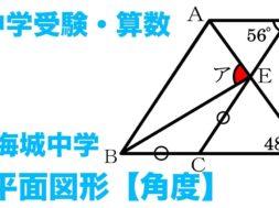 【中学受験・算数】平面図形・角度【海城中学入試問題】