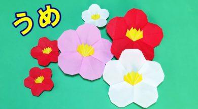 【折り紙】梅の折り方
