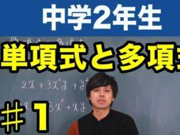 単項式と多項式【中学2年生】数学