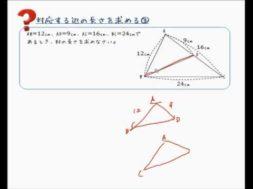 【中学3年 数学】相似な図形の対応する辺を求める③