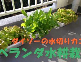 【水耕栽培】栽培容器のつくりかた